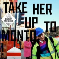 Roisin Murphy, Take Her Up To Monto