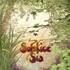 Solstice, Sia mp3
