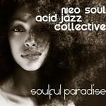 Neo Soul Acid Jazz Collective, Soulful Paradise