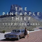 The Pineapple Thief, Your Wilderness mp3
