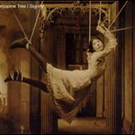 Porcupine Tree, Signify