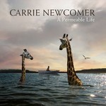 Carrie Newcomer, A Permeable Life