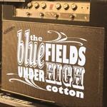 The Bluefields, Under High Cotton
