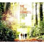 The Blow Monkeys, Feels Like A New Morning