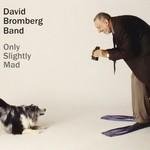 David Bromberg Band, Only Slightly Mad