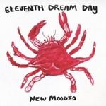 Eleventh Dream Day, New Moodio