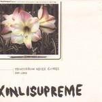 Xinlisupreme, Tomorrow Never Comes