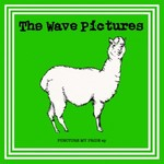 The Wave Pictures, Puncture My Pride