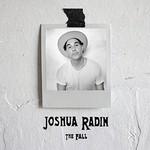 Joshua Radin, The Fall mp3