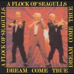 A Flock of Seagulls, Dream Come True