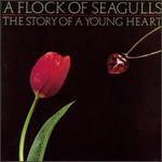 A Flock of Seagulls, The Story of a Young Heart