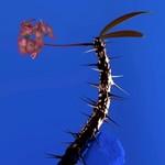 Flume, Skin Companion II EP