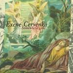 Exene Cervenka, Somewhere Gone