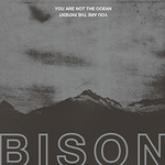 Bison B.C., You Are Not The Ocean You Are The Patient