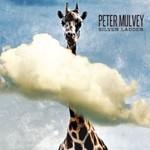 Peter Mulvey, Silver Ladder