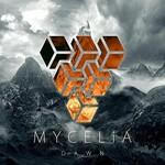 Mycelia, Dawn
