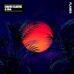 David Guetta & Sia, Flames