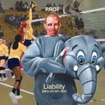 Prof, Liability mp3