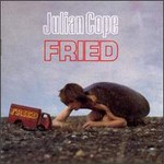 Julian Cope, Fried