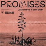 Calvin Harris & Sam Smith, Promises