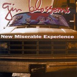 Gin Blossoms, New Miserable Experience