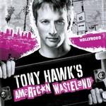 Various Artists, Tony Hawk's American Wasteland mp3