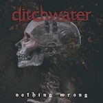 Ditchwater, Nothing Wrong