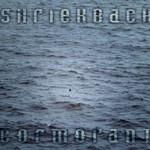 Shriekback, Cormorant