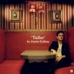 Jamie Cullum, Taller mp3