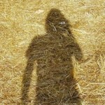 Steven Wilson, Unreleased Electronic Music