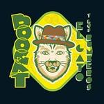 Boogat, El Gato y los Rumberos
