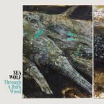 Sea Wolf, Through A Dark Wood mp3