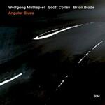 Wolfgang Muthspiel, Scott Colley & Brian Blade, Angular Blues
