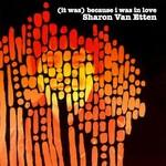 Sharon Van Etten, (It Was) Because I Was In Love mp3