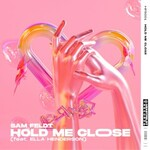 Sam Feldt, Hold Me Close