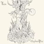 Elephant Tree, Theia