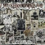 Mushroomhead, A Wonderful Life
