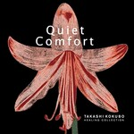 Takashi Kokubo, Healing Collection: Quiet Comfort mp3