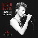 David Bowie, Ouvrez le chien: Live Dallas 95