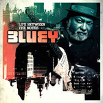 Bluey, Life Between The Notes