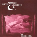 Siouxsie and the Banshees, Tinderbox