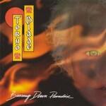 Tokyo Blade, Burning Down Paradise mp3