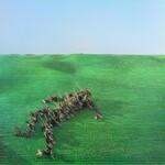 Squid, Bright Green Field