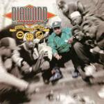 Diamond D, Stunts, Blunts & Hip Hop