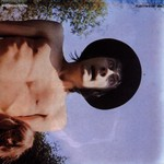 Fleetwood Mac, Mr. Wonderful mp3