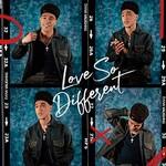 Dana Vaughns, Love So Different