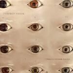 Thalia Zedek Band, Perfect Vision mp3