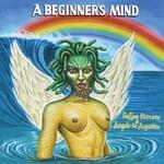 Sufjan Stevens & Angelo De Augustine, A Beginner's Mind