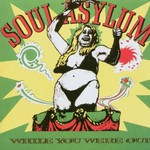 Soul Asylum, While You Were Out