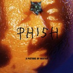 Phish, A Picture of Nectar